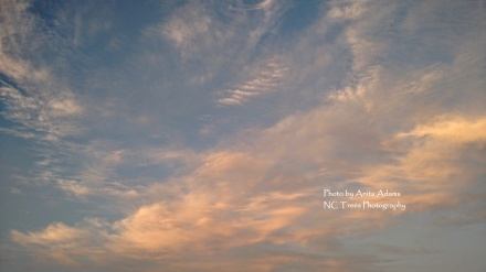 Signed - Clouds in Early Summer